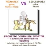 Torneo-pallavolo