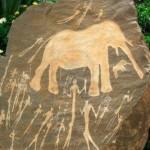 10208278-preistorica-neolitica-africana-arte-rupestre-del-northern-cape-che-mostra-una-scena-di-caccia