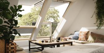 finestre-da-tetto-piante