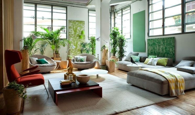 Vivere roma come avere una parete verde in casa - Piante per camera da letto ...