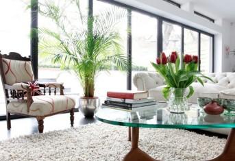 salotto-arricchito-da-fiori-e-piante